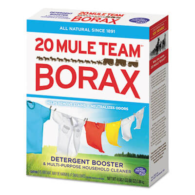 Dial Professional 20 Mule Team Borax Laundry Booster Dia00
